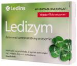 Ledizym_1406
